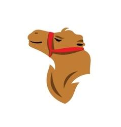 Camel Head Cartoon vector image vector image