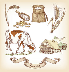 hand drawn of cow vector image vector image
