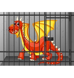 Red dragon in the cage vector image