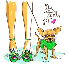 legs of fashion girl and little chihuahua vector image