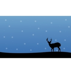 Silhouette of deer winter Christmas scenery vector image vector image