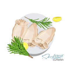 a dish cuttlefish with lemon vector image