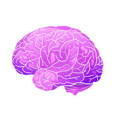 cartoon neon of a human brain with vector image