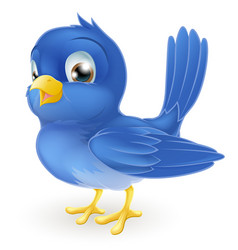 cute cartoon bluebird vector image