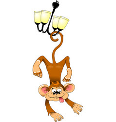 monkey on the chandelier vector image