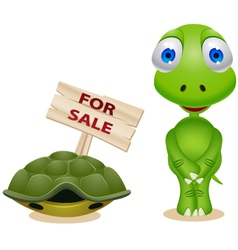 Turtle sell his shell vector
