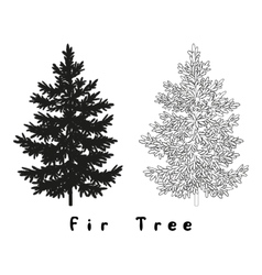 Christmas Tree Silhouette Contours and vector image vector image