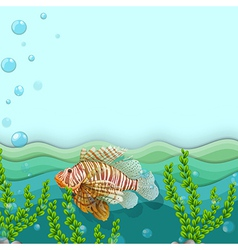 A big fish under the sea vector image