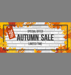 autumn sale fallen maple leaves frame brick vector image