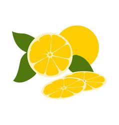 fresh yellow lemon fruit flat design vector image