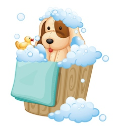 A dog inside a pail full of bubbles vector image