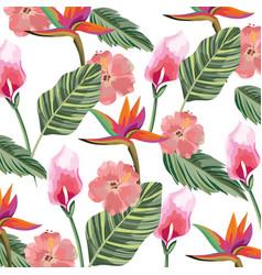 beautiful tropical flowers cartoon vector image