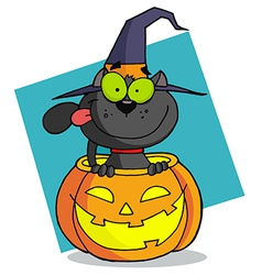 Cartoon Character Halloween Cat vector image