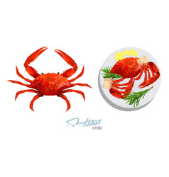 Crab isolated on white background meat crab with vector