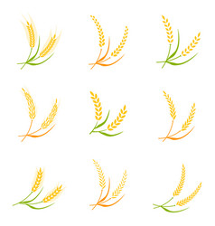 Ear spike logo badge icon wheat isolated vector