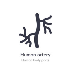 Human artery outline icon isolated line from vector
