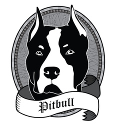 Pitbull Portrait Isolated dog vector