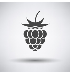 Raspberry icon on gray background vector image vector image