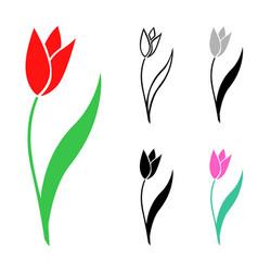 Set of tulips flowers vector