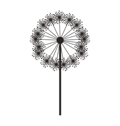 Silhouette dandelion with stem and pistil vector