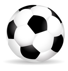 soccer ball with shadow vector image