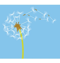 dandelion in the wind vector image vector image