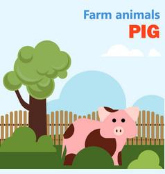 Farm animal pig vector