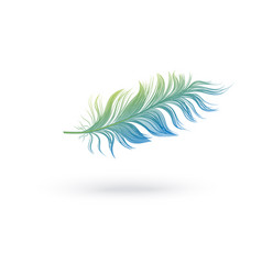 Green and blue fluffy feather floating in air vector