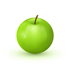 Green apple on white background vector