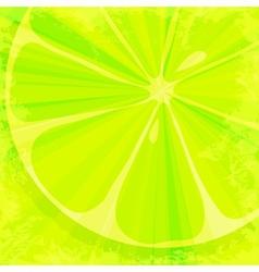 Lime grunge background vector