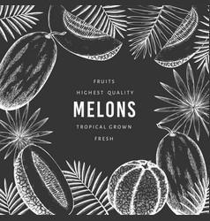 Melons with tropical leaves design template hand vector