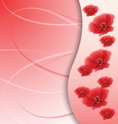 poppy flowers on the greeting card vector image vector image