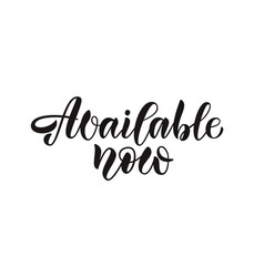 calligraphy text on website online shop vector image
