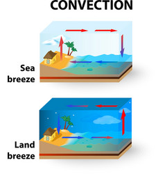 Con Land Breeze and Sea Breeze vector image