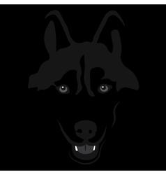 dog in shadow Siberian husky Portrait vector image
