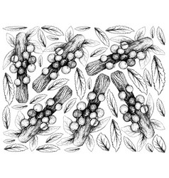 Hand drawn background of davidson plum fruits vector