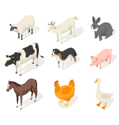Isometric 3d set of farm animals vector image