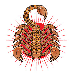 vintage scorpion flash tattoo vector image
