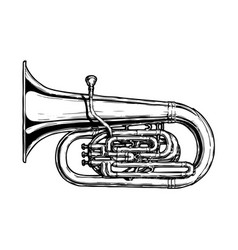 tuba vector image