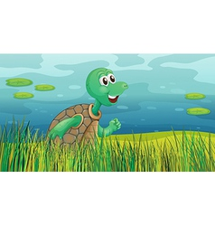 A turtle running along the pond vector