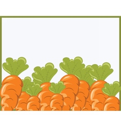 Bunch of Carrots vector