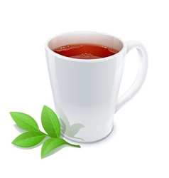 Cup of tea with green tea vector