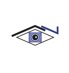 Original Stylized Eye For Various Purposes vector