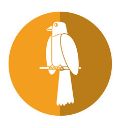 Parrot bird animal icon shadow vector