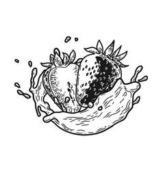 Splash milk strawberry vector