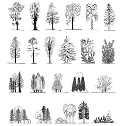 a set tree silhouettes vector image