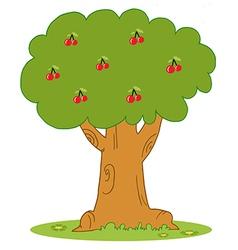 Lush Cherry Tree vector image