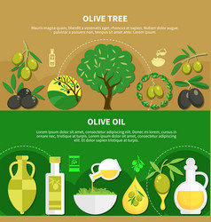 olive oil horizontal banners vector image