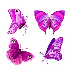 Purple butterflies vector