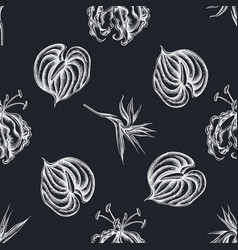 seamless pattern with hand drawn chalk gloriosa vector image